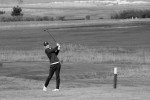 BridgestoneBC_golf__256.jpg
