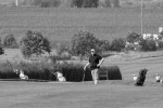 BridgestoneBC_golf__286.jpg